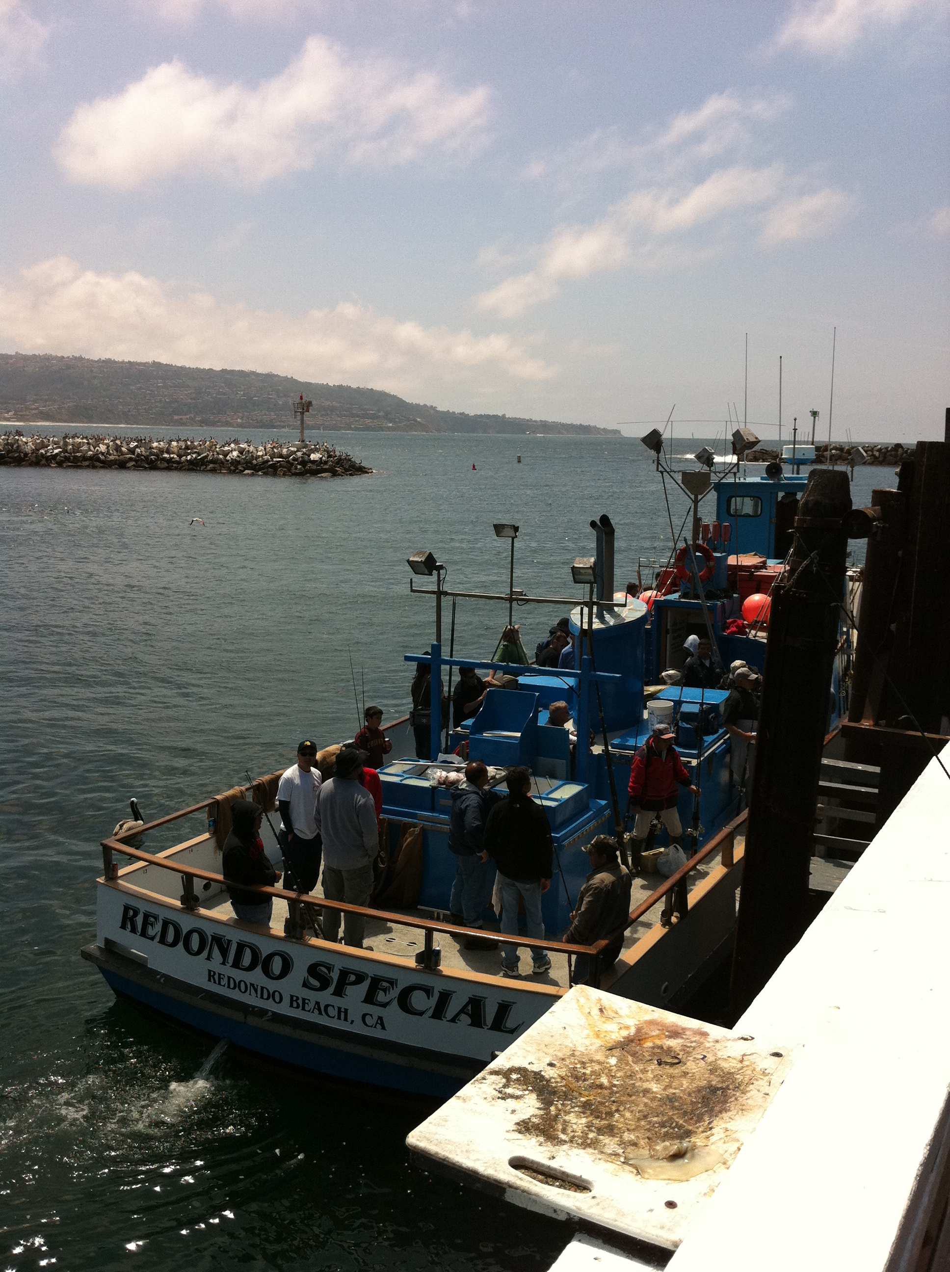 Socalsalty trip report redondo special day in pics for Redondo sport fishing